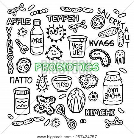 Probiotics Bacteria, Food And Medicine Set.  Gut Bacterial Flora. Fermentation Products. Vector Icon