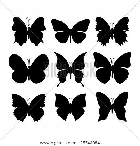 silhouettes of butterflies, vector