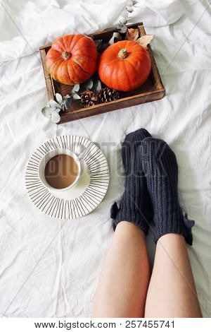 Autumn Bed Still Life. Female Legs In Knitted Socks And Cup Of Coffee. Wooden Tray With Pumpkins, Eu