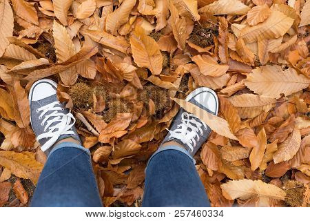 Woman Standing In Dry Autumn Leaves
