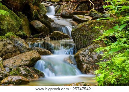 Waterfall on mountain brook in forest
