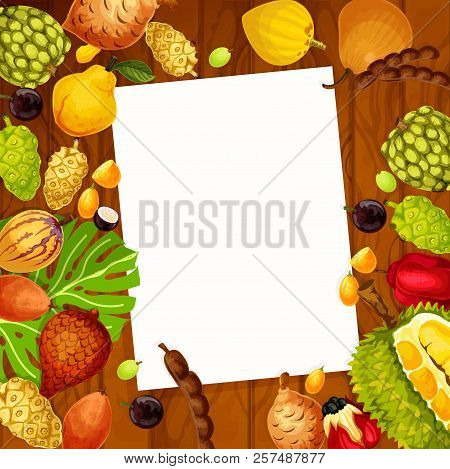 Recipe Note List Of Exotic Fruits. Vector Design Of Salak, Jujube Or Sapodilla And Ackee, Tropical P