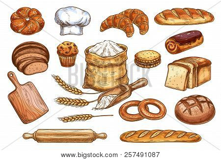 Bakery Sketch Bread Or Pastry And Baker Chef Items. Vector Icons Of Flour Sack Bag And Dough Or Cutt