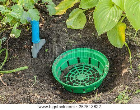 Basket For Planting Bulbous Plants