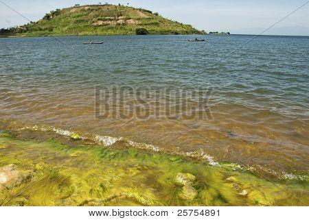 Mossy Lakeside