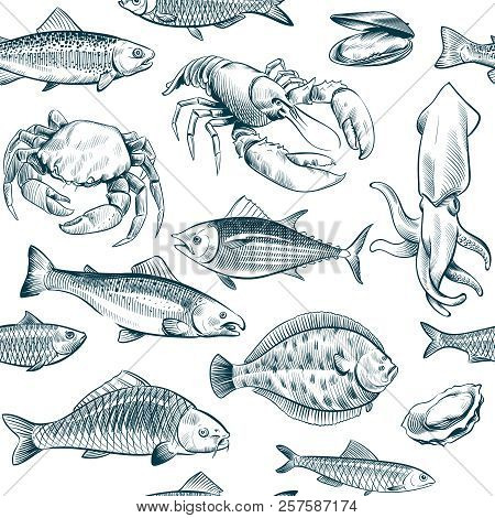Sketch Seafood Seamless Pattern. Oyster Salmon Lobster Shellfish. Hand Drawn Seafoods Vintage Vector