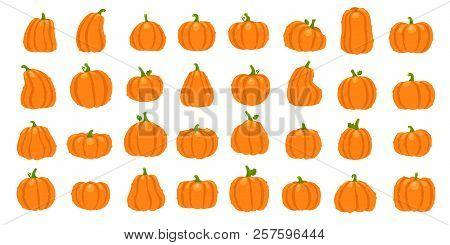 Cartoon Orange Pumpkin. Halloween October Holiday Decorative Pumpkins. Yellow Gourd, Healthy Squash