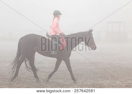 Girl Riding Horse On The Field In The Mist Morning