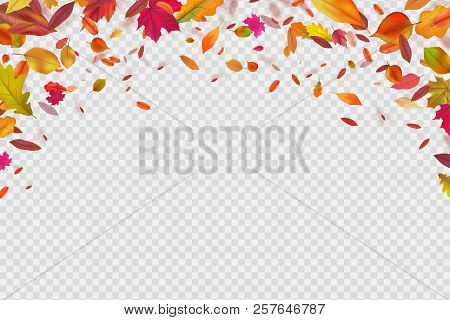 Autumn Falling Leaves. Autumnal Forest Foliage Fall. Vector Illustration Isolated On White Backgroun