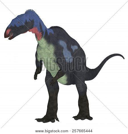 Camptosaurus Dinosaur On White 3d Illustration - Camptosaurus Was A Herbivorous Ornithischian Dinosa