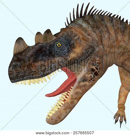 Ceratosaurus Dinosaur Head 3d Illustration - Ceratosaurus Was A Theropod Carnivorous Dinosaur That L