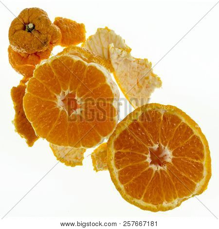 Sumo Citrus, also called dekopon, is a seedless and sweet mandarin variety, distinctive due to its large size and large protruding bump on the top. poster