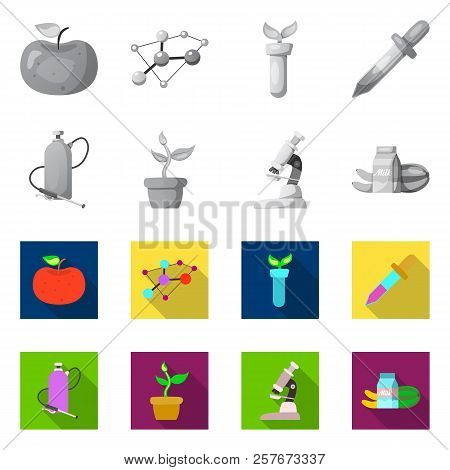 Isolated Object Of Genetic And Plant Sign. Collection Of Genetic And Biotechnology Stock Symbol For