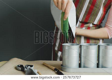 Worker Pours Soil Into Flower Pot, Stock Photo Image