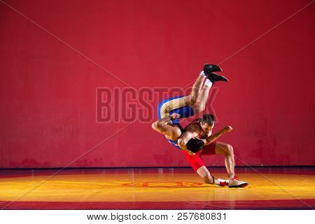 Two strong wrestlers in blue  wrestling tights are wrestlng and making a  making a hip throw  on a yellow wrestling carpet in the gym. Young man doing grapple. poster