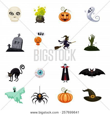 Set Of Halloween Feast, Collection Of Attributes Halloween Skull, Vampire, Witch Cauldron, Witch On