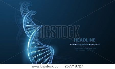 Dna. Abstract 3d Polygonal Wireframe Dna Molecule Helix Spiral On Blue.