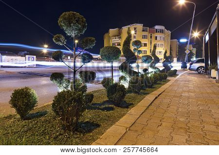 Figuratively Trimmed Green Bushes In Neon Light Along The Pedestrian Sidewalk Of The Night City