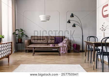 Real Photo Of Light Grey Sitting Room Interior With Brown Couch With Blanket And Violet Pillow, Coff