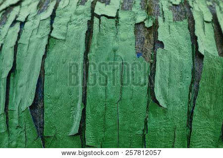 Green Wood Texture From A Worn Old Board With Chunks Of Paint