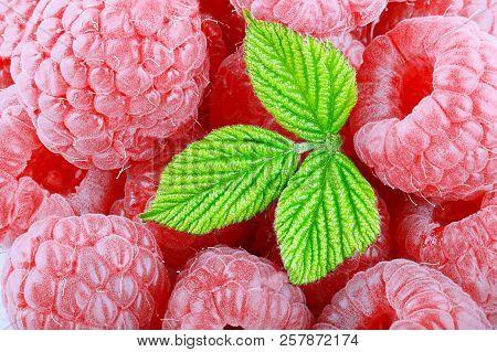 Fresh And Sweet Raspberries With Leaf Background