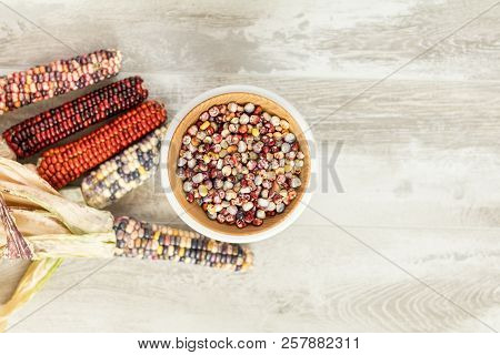 Cheerful And Colorful Dried Indian Corn On Light Wooden Surface As Decoration For Thanksgiving Table