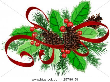 A Vector illustration of decorative christmas pine cones with ribbons and holly