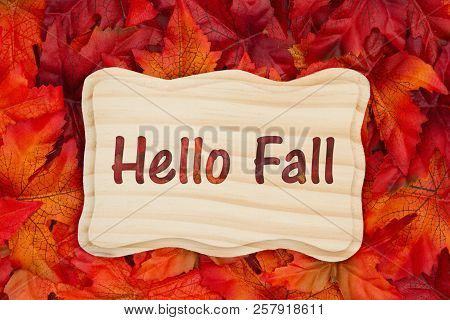 Hello Fall, Some Fall Leaves And A Wood Frame With Text Hello Fall