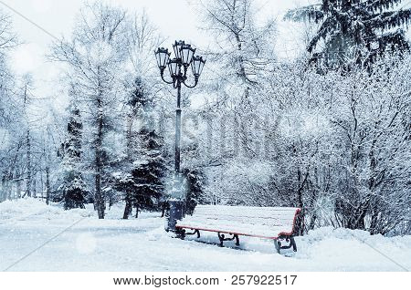 Winter landscape with falling snowflakes - bench covered with snow among frosty park winter trees and street lanterns. Winter snowy landscape view, winter picturesque landscape scene. Winter park trees covered with snow
