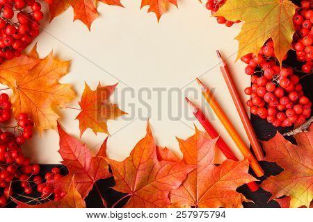 Bright Autumn Leaves And Text; Generic Fall Background, Perfect For Sale Banners, Wedding Invitation