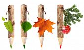Wooden pencils with leaves isolated on white background. Four seasons: spring, summer, autumn, winter poster