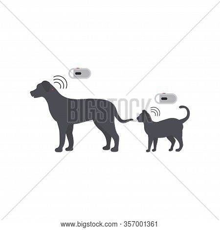 Pet Services - Microchipping. Icon Dogs And Cats With Microchip Pill Inside The Body And Information