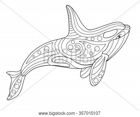 Killer Whale - Antistress Coloring Book - Vector Linear Picture On The Marine Theme. Picture For Col