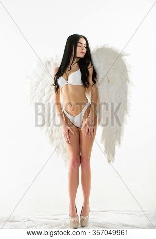 Femininity And Sensuality. Angel Feather Wings Accessory. Erotic Angel. Playful And Full Sexual Desi