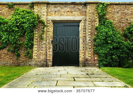 Door In An Ivy Covered Wall