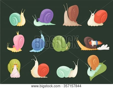 Snails Characters. Cartoon Insects With Spiral House Shell Slug Slime Vector Illustration. Slime Fun