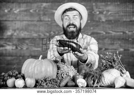Organic Pest Control. Man With Beard Wooden Background. Farmer With Organic Vegetables. Excellent Qu