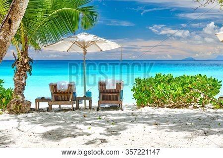 Beautiful Petite Anse beach with palm tree at Seychelles, Mahe