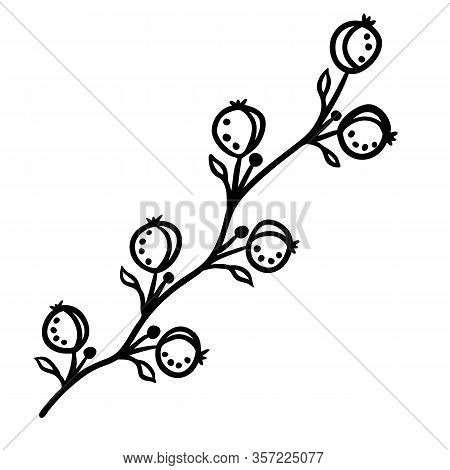 Stylized Berries Silhouette In Doodle Style On White Background. Black Illustration Like As Hand Dra