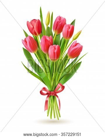 Tulips Bouquet. Realistic 3d Spring Holland Flowers For International Woman Day 8 March, Mother And