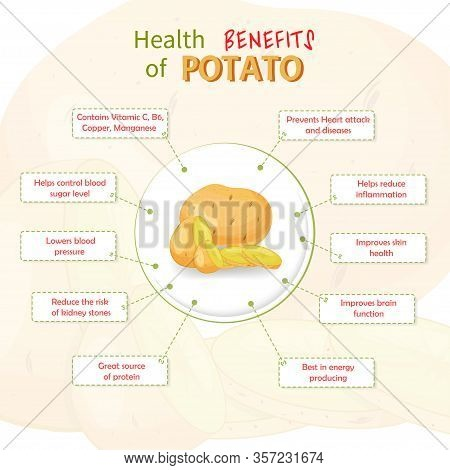 Health Benefits Of Potato. Potatoes Nutrients Infographic Template Vector Illustration