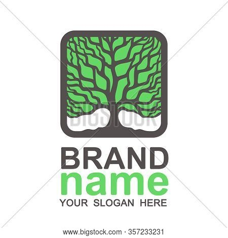 Tree Of Life Logo In A Square Frame. Thick Green Crown, Brown Branches And Trunk. Icon, Sign, Symbol