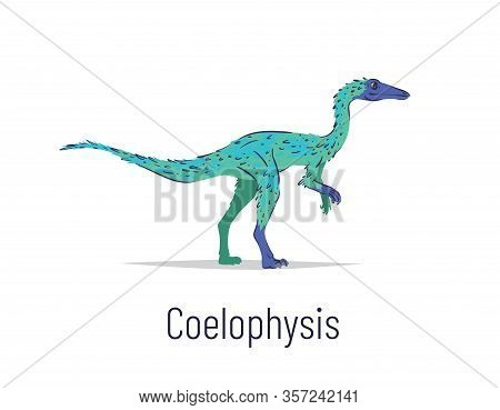 Coelophysis. Theropoda Dinosaur. Colorful Vector Illustration Of Prehistoric Creature Coelophysis In