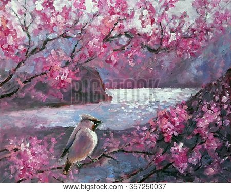 Landscape Oil Painting Illustration. Waxwing Bird On A Background Of Spring Blooming Pink Flowers Ri