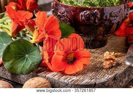 Detail Of Fresh Tropaeolum Majus Flowers, With Homemade Nasturtium Pesto In The Background