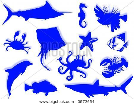 Sea-life black silhouette for this sea-life background poster