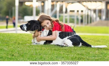 Beautiful Young Girl Is Hugging Her Pet And Stroking Its Fur. Cute Photo Of Dog And Its Owner Relaxi