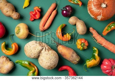 Trendy Ugly Organic Vegetables. Assortment Of Fresh Eggplant, Onion, Carrot, Zucchini, Potatoes, Pum