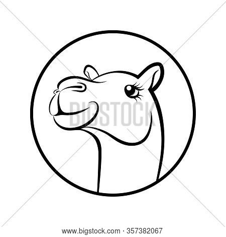 Camel Face Graphics Symbol. Camel Sign In The Circle Isolated On White Background. Vector Illustrati