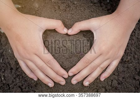 The Perfect Soil Has A Hand Protecting Concept Of Soil Preparation For Agricultural Cultivation. Soi
